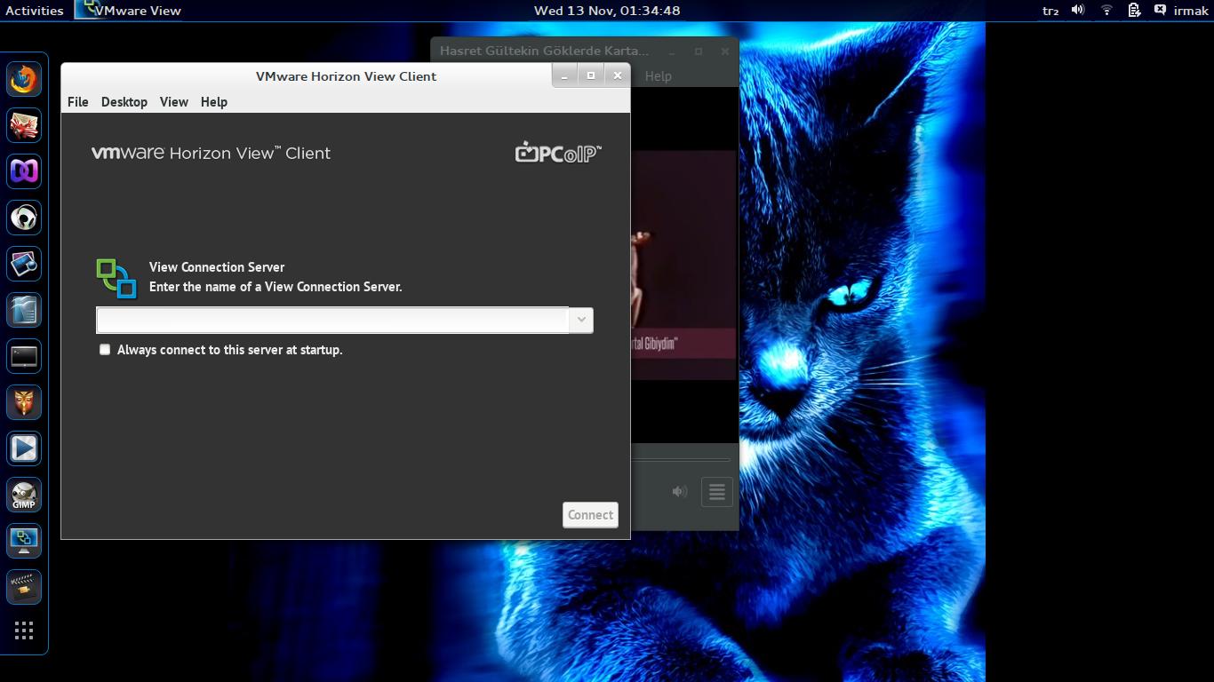 Screenshot from 2013-11-13 01:34:48